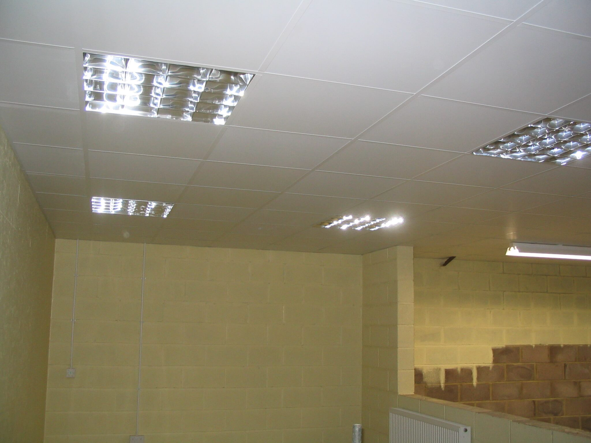 Suspended Ceiling in Frome