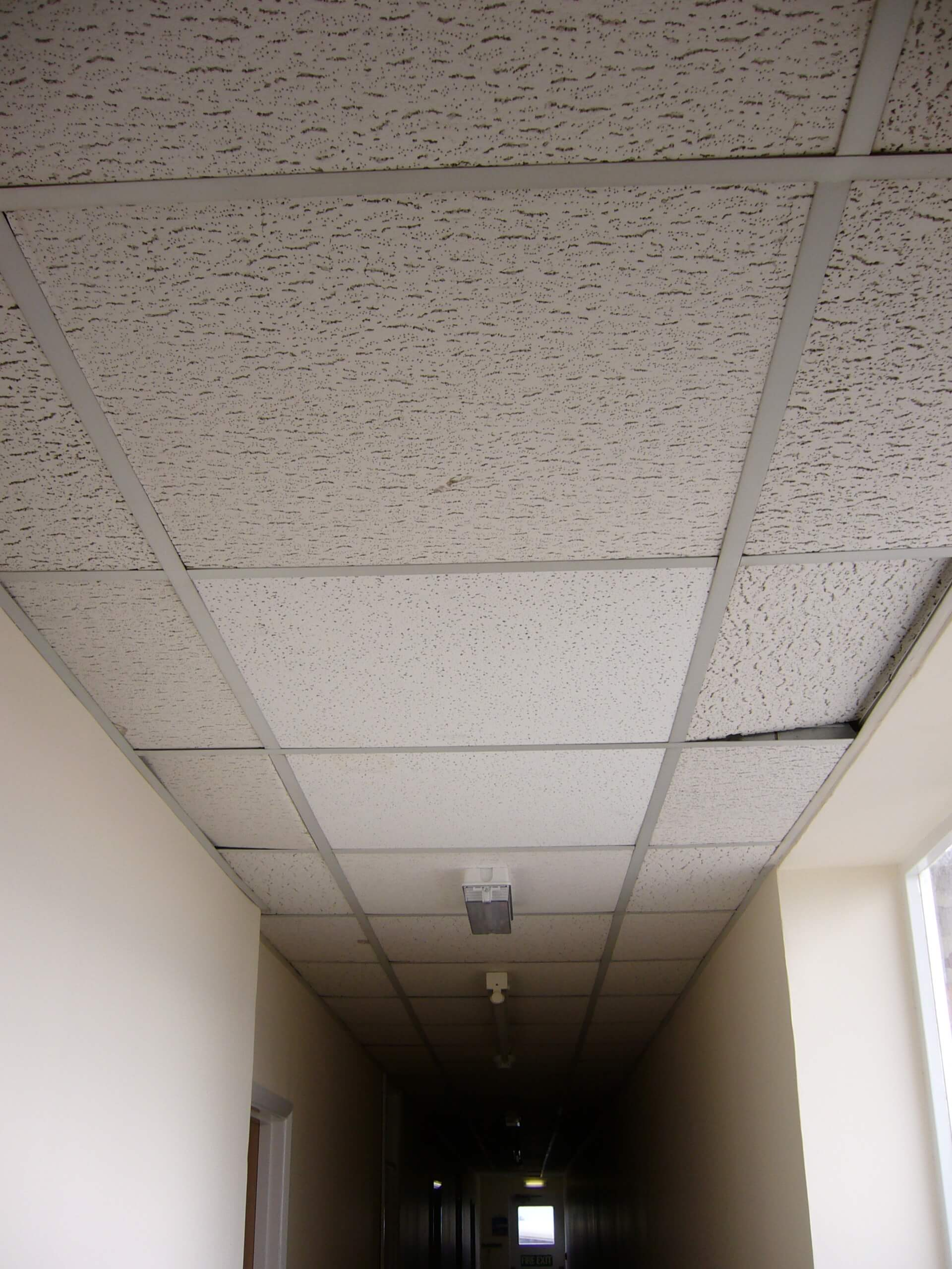 Suspended ceiling in Corsham, Wiltshire