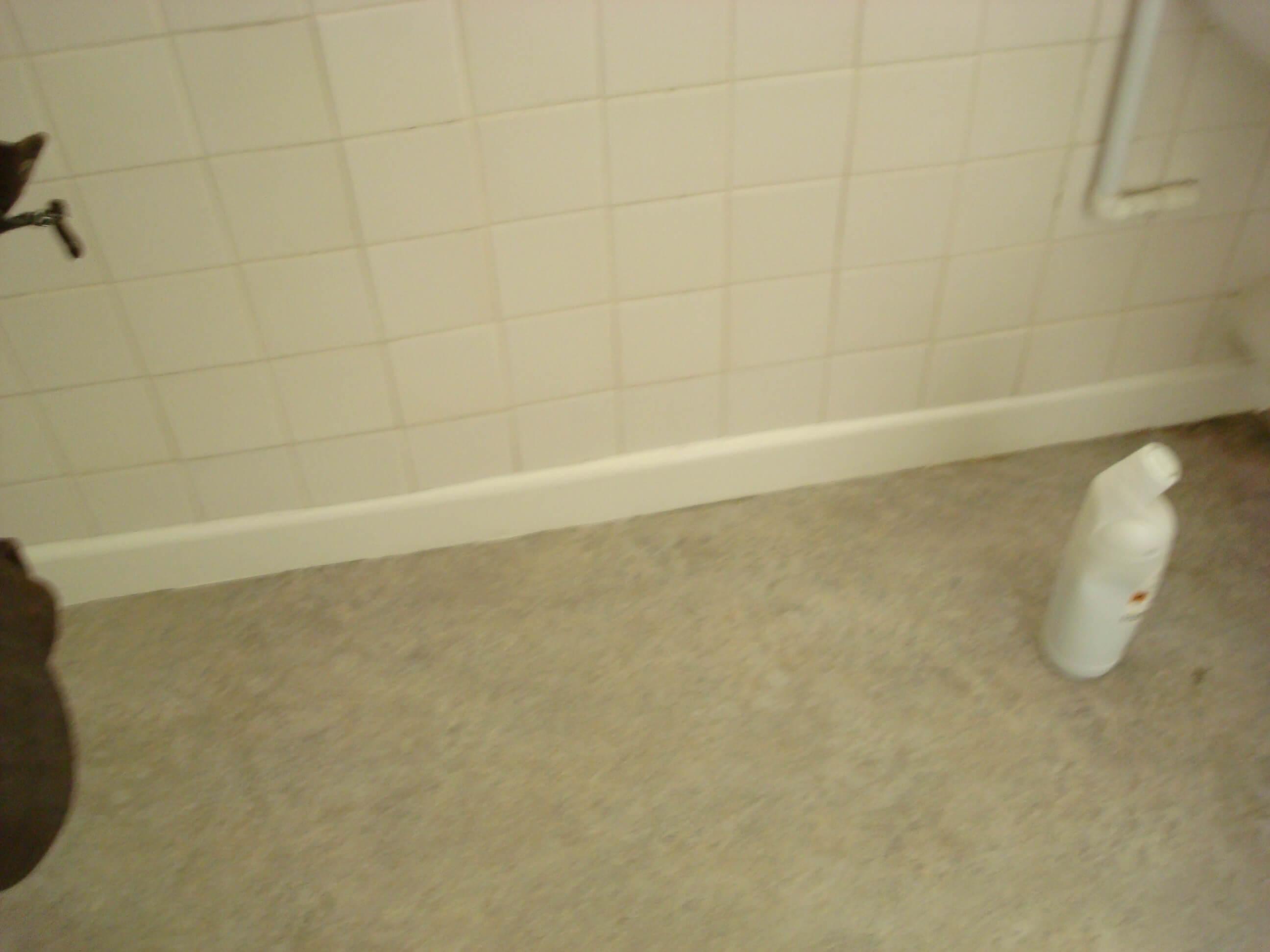 Toilet Refurbishment in Chiippenham