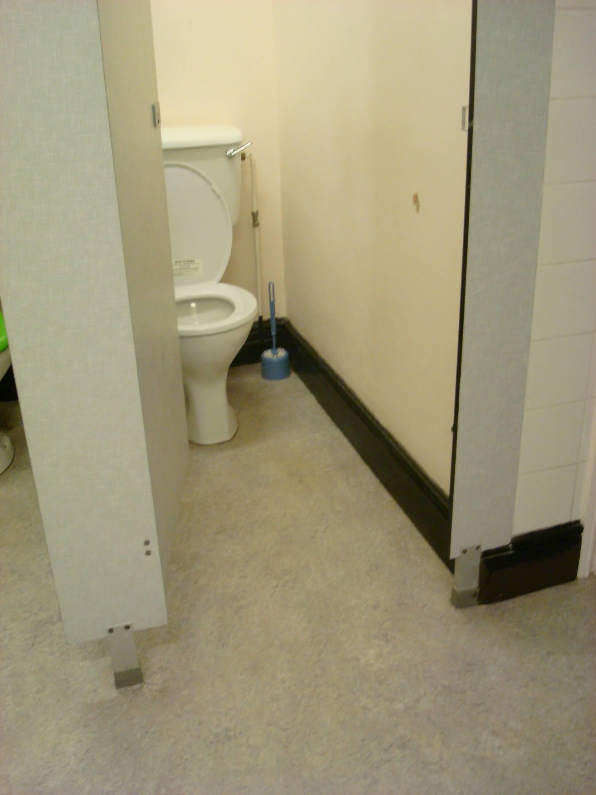 Toilet Refurbishment Pew Hill House in Chiippenham