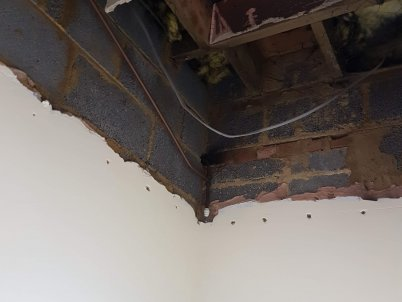 Removed the old suspended ceiling